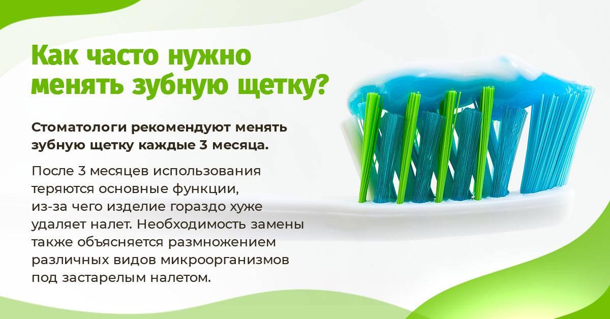 Как часто нужно менять зубную щетку?