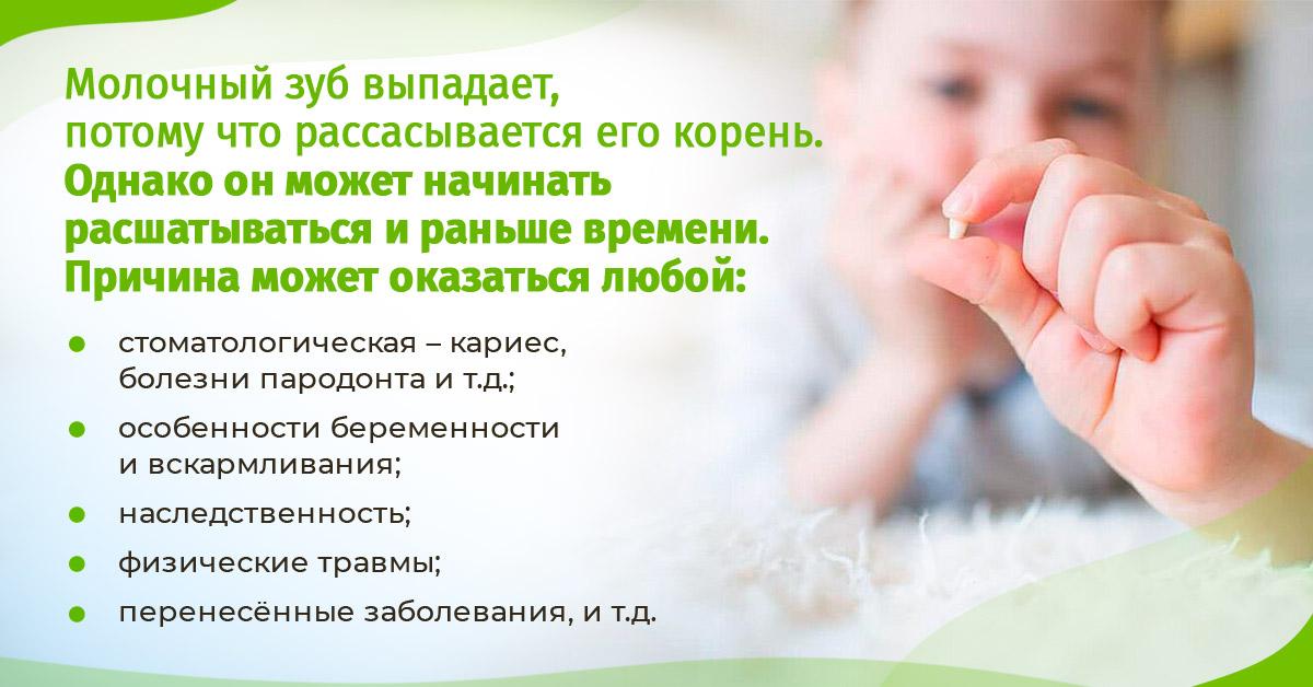 Молочный зуб выпадает, потому что рассасывается его корень.